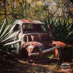 A rustbucket...still looks good... ©2016 Regina Martins