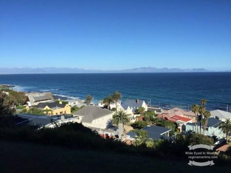 Cape Penninsula views... ©2016 Regina Martins