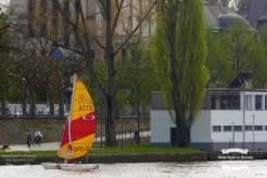 Sailing on the Main river in Frankfurt ©2017 Regina Martins
