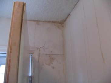In many cases, rental property is used for marihuana grow operations. Persons involved in these activities often alter the structure of the home to conceal illegal wiring or power connections. In addition, excessive moisture breeds molds which can damage your health as well as the structure of the home. Damage to the roof is also common from mold or additional venting. Wood stairs or framing can rot from the mold and moisture. This can include, but is not limited to, wall studs and floor joists.