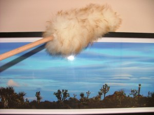 Using a lambswool duster on picture frame. The picture's a photo of famed Joshua Tree Park.