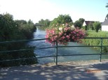 Blumenschmuck Schleusenbrücke Rosenau