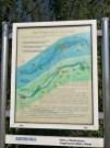 eine von ca. 12 bebilderten Schautafeln BH 1x1.5 m Fischlehrpfad