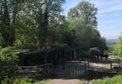 Pferdekoppel mit Stall