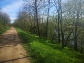 Radweg mit feinem Naturbelag mit Blick auf Restrheines im Frühling