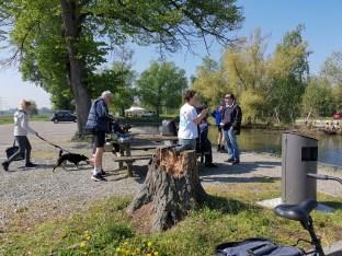Picknickplatz am alten Hafen Kembs, Canal de Huningue
