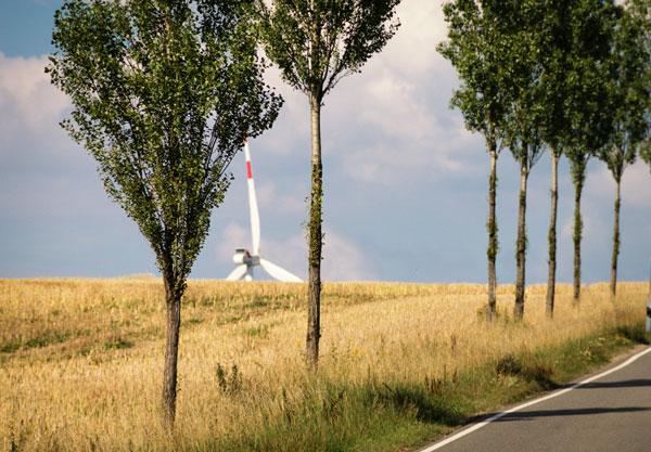 Felder und Windkraft