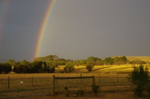 rainbow 2016 1