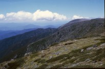 Mt Bogong and the Staircase spur, which I had just ascended