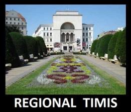 REGIONAL TIMIS sigla