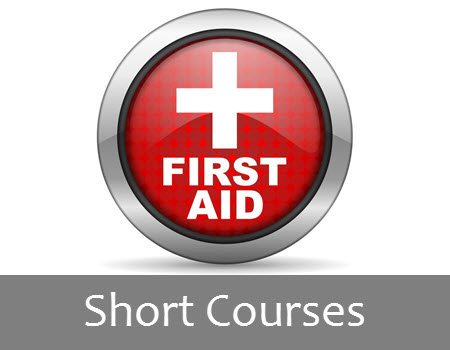 regional training services - short courses