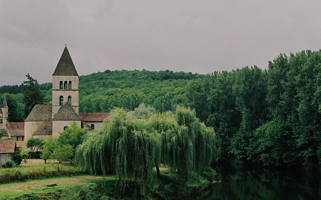 Saint Léon sur Vézère (24)