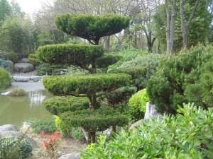 Jardin Japonais de Compans Cafarelli Toulouse