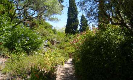 Parc Sainte-Claire