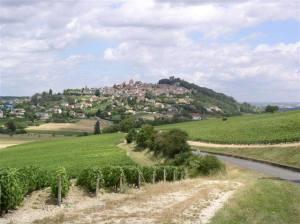 Nievre vignobles devant la colline de Sancerre
