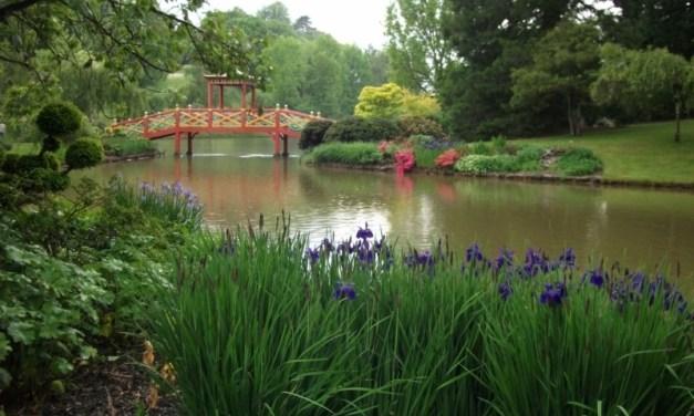 Parc Floral d'Apremont