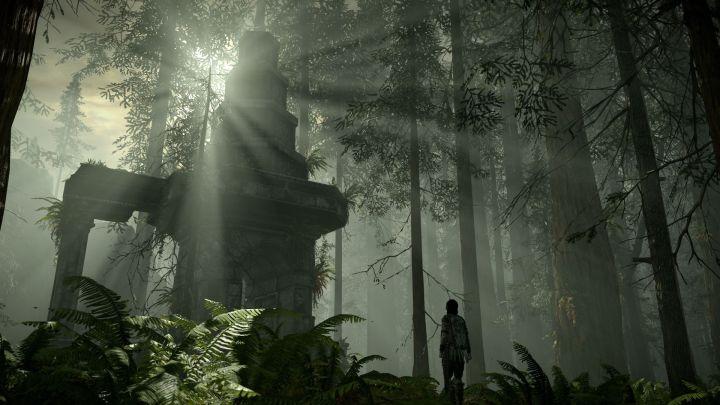 Shadow of Colossus | Nueva comparativa gráfica entre las versiones de PS3 y PS4