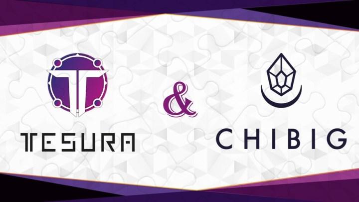 Chibig Studio y Tesura Games anuncian nueva colaboración. Comenzarán con la edición física de Summer in Mara