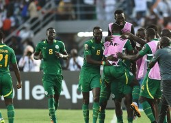 Senegal: The Teranga lions have confirmed world cup ticket