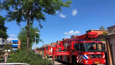 Photo of Brand woning na wegbranden wespennest