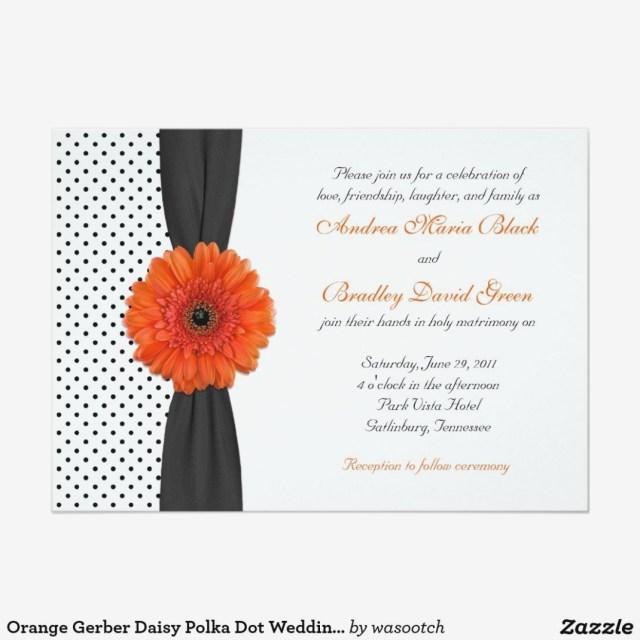 Daisy Wedding Invitations Orange Gerber Daisy Polka Dot Wedding Invitation Gerber Daisy