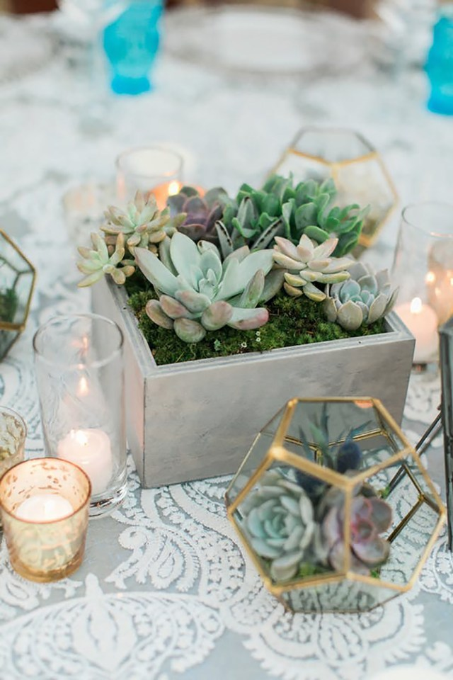 Succulent Wedding Decorations 10 Ways To Use Succulents At Your Wedding Chwv