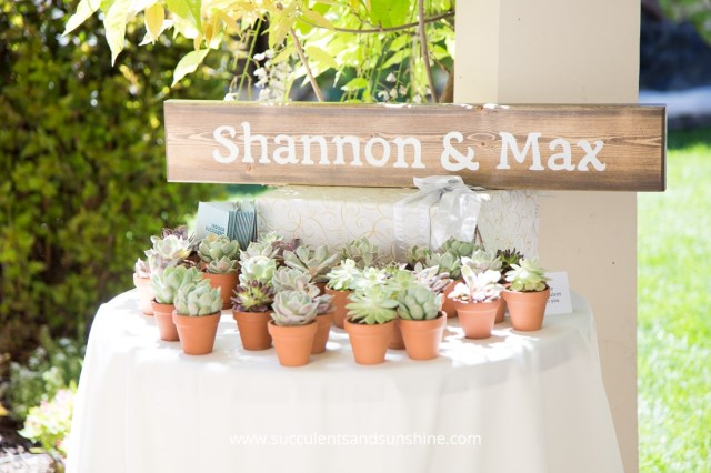 Succulent Wedding Decorations The Ultimate Resource For Your Succulent Wedding Succulents And