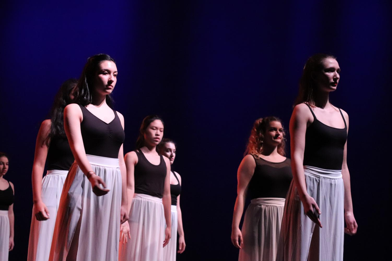 Modern Dance Company's dancers shone in the recent DANCE/works performance.