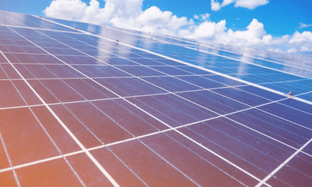 Bifacial emerges as a prominent technology for utility-scale projects