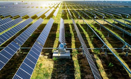 Hawkes Bay Airport, Centralines sign JV for a solar project