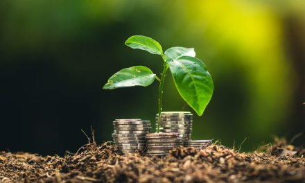 Germany to release a green expenditure framework worth more than € 12.7 billion