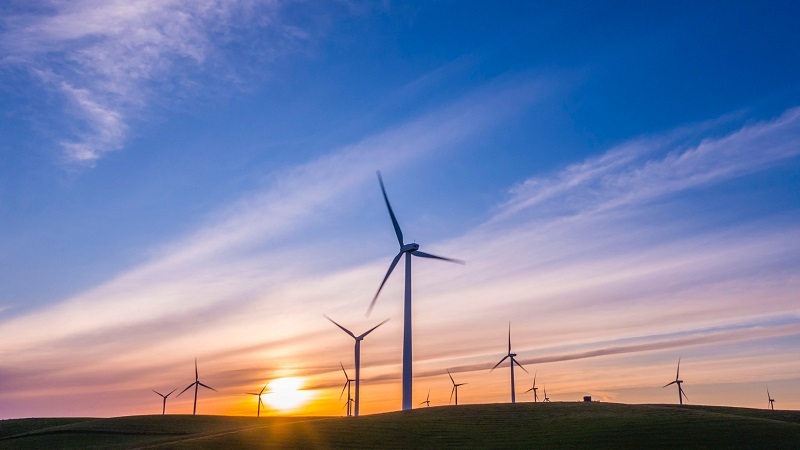 Wind and solar capacity will overtake both gas and coal globally by 2024: IEA