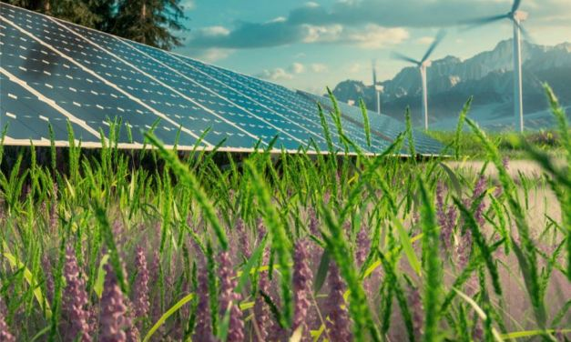 If green energy is the future, how can technology lead the way?