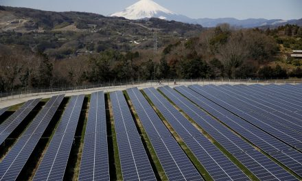 Rising solar: Investing in Japan's energy transition