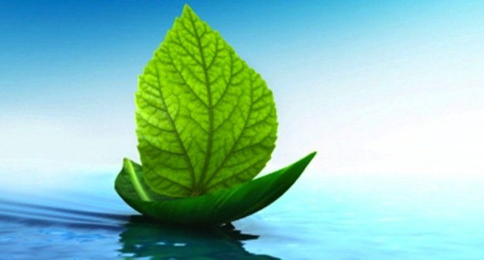Solutions to decarbonize shipping