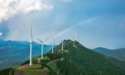 Goldwind Perspective on Wind Power Market