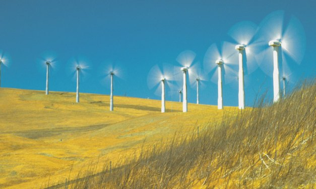 A gust of growth in China makes 2020 a record year for wind energy