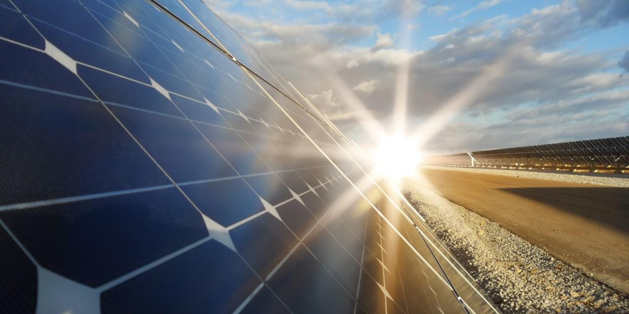 Rayzon Solar to build 1.2 GW of mono PERC module capacity in India