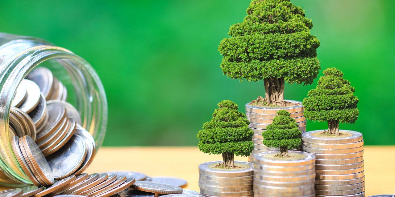 Sudanese bank launches a $11.3 million green sukuk