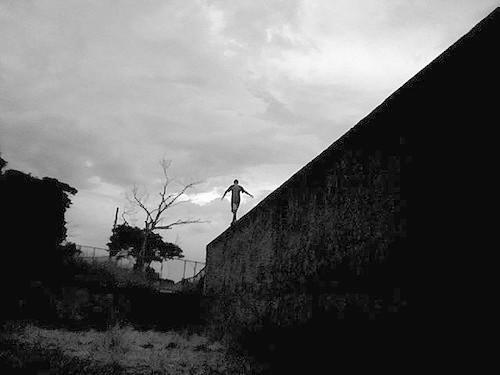 Aventura em cima do muro: Explosão de verdades cordiais (Novembro 2016)