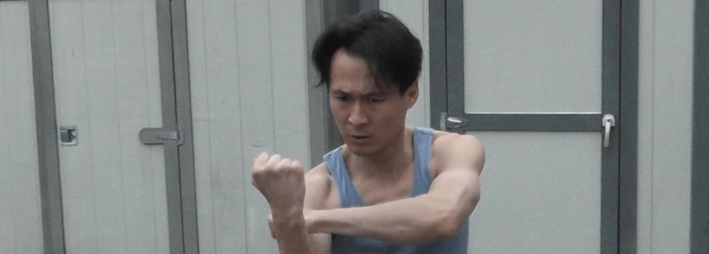 Taming the Tiger – Hung Gar Kung Fu
