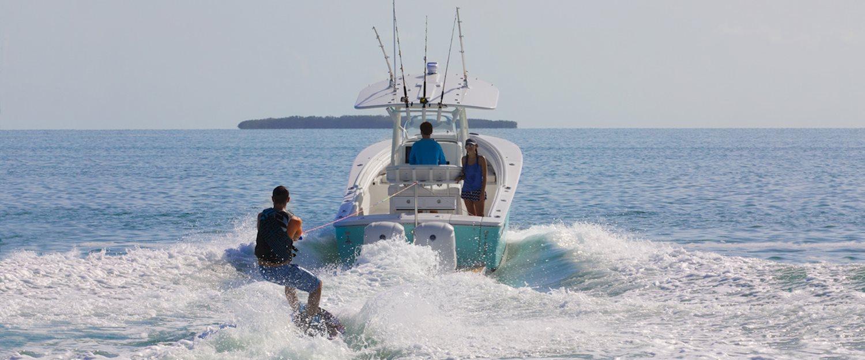hight resolution of regulator marine