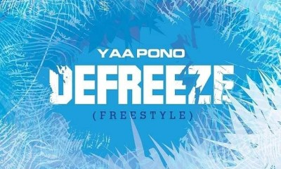 Defreeze (Freestyle)