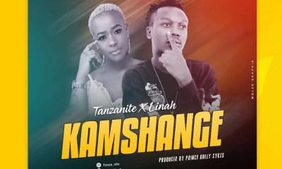 tanzanite-x-linah-kamshange