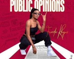 Freda_Rhymz_-_Public_Opinions
