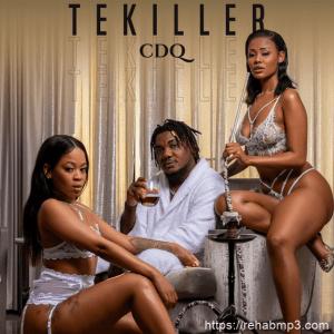 DOWNLOAD MP3: CDQ – Tekiller
