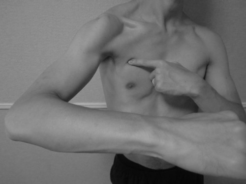 大胸筋胸肋部