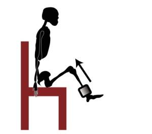 筋トレ|チェア・ニートゥチェスト|腸腰筋の筋力トレーニング