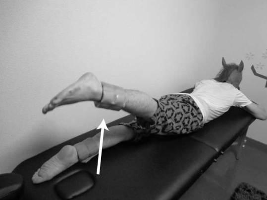 大殿筋,筋力トレーニング,方法,重錘