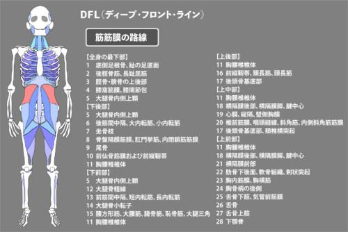 腰方形筋:筋膜:DFL